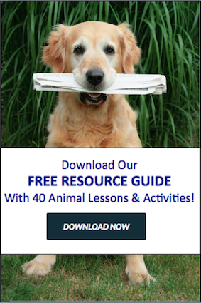 Humane Resource Guide